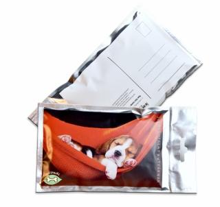 Képslap jutalomfalattal töltve - Beagle kölyök